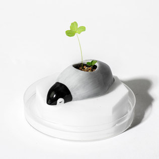 Picture of: Frozoon Floating Animal Planters (Penguin) | Secret Santa Generator Gifts