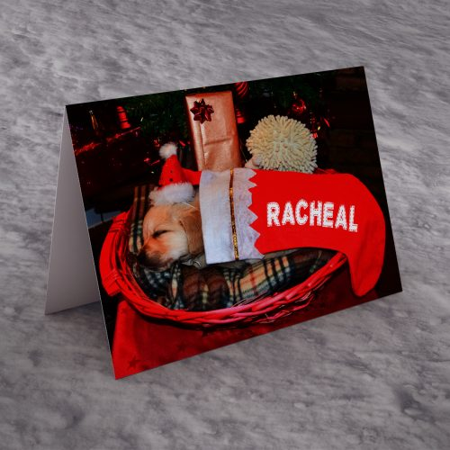 Picture of: Personalised Christmas Card - Santa's Dog | Secret Santa Generator Gifts