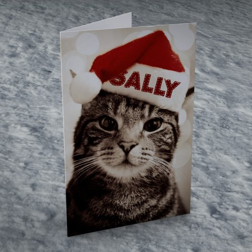 Picture of: Personalised Christmas Card - Cat In Hat | Secret Santa Generator Gifts