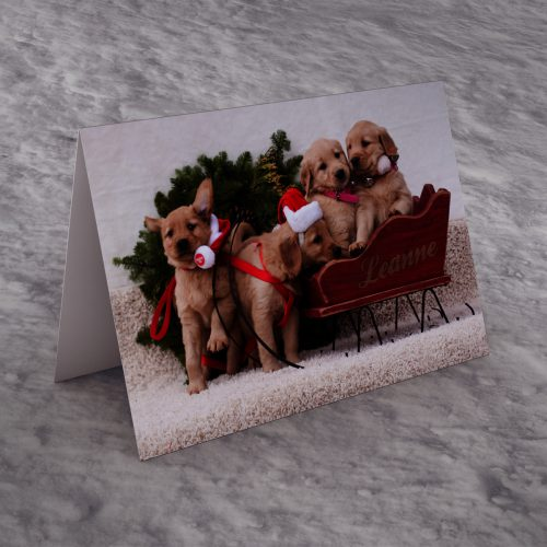 Picture of: Personalised Christmas Card - Puppy Sleigh | Secret Santa Generator Gifts