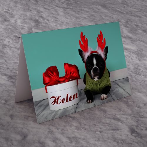 Picture of: Personalised Christmas Card - Reindeer Dog | Secret Santa Generator Gifts